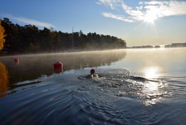 Villa Furuvik Rantasauna ja uintimahdollisuus